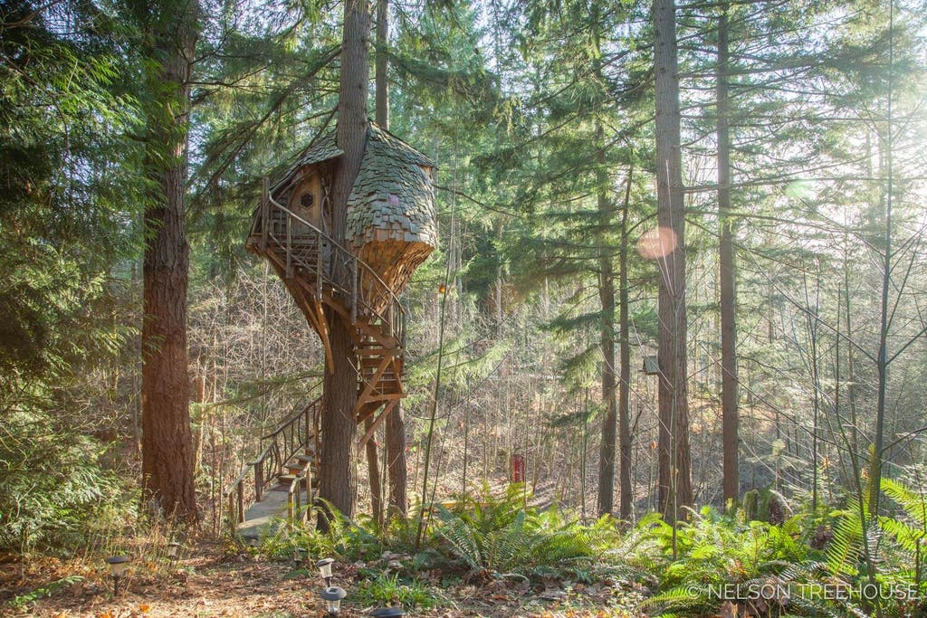 Treehouse BeeHive inspired - Built by Nelson Treehouse2